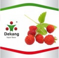 E - Liquid Dekang Wild Strawberry 10ml - 11mg (Lesní jahoda)